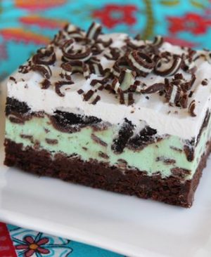 Brown and white cake looking Mint Chip Brownie Bite