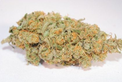 BUy Super Lemon Haze online  Nice sized nugs, Lime green covered in crystals and red hairs