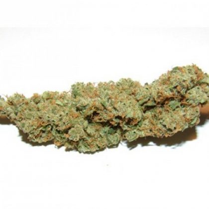 These nugs are frosty with a fine layer of thick chunky white trichomes and are sticky with sweet resin.