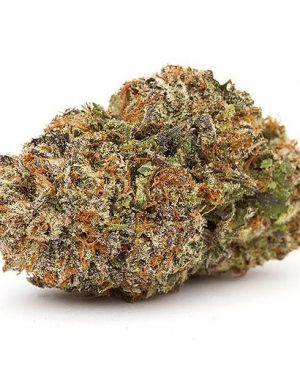Thebuds are light green, dense and hard to pull apart. The nugs are tightly coatedin trichomes and orange pistils.