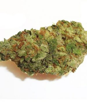 light green Nice sized nugs, Lime green covered in crystals and red hairs.