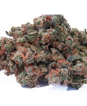 Buy Chemdawg weed