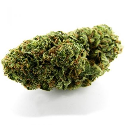 dark orange-greenish Hairy spear tip shaped buds with peach colored pistils, the trichome coverage gives it a grey looking color under certain lighting