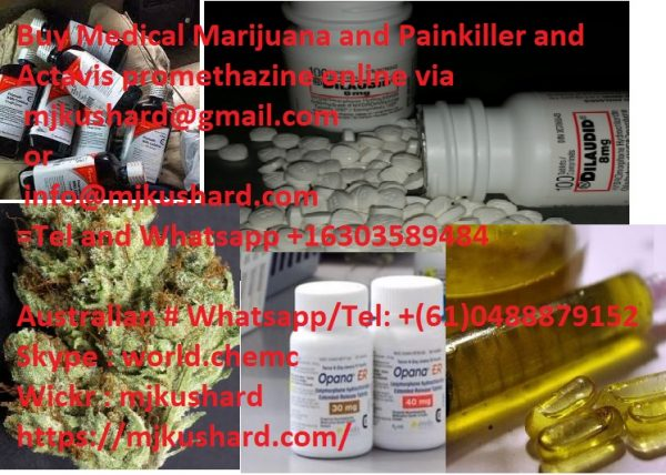 Top 10 best place to Buy OG Kush | Buy Pineapple Express | Buy Purple Kush |Buy Sour Diesel, concentrate oil, Harsh Oil, cancer oil and Pain Killers online.
